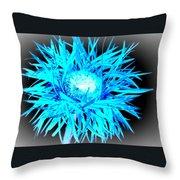 0687c-007 Throw Pillow