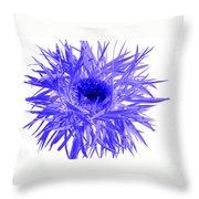 0687c-015 Throw Pillow