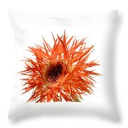 0688c-005 Throw Pillow