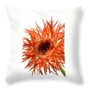 0688c-012 Throw Pillow