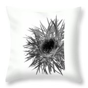0688c-016 Throw Pillow