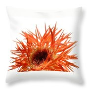 0688c-020 Throw Pillow