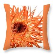 0689c-002 Throw Pillow