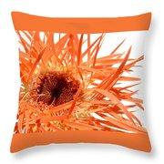 0689c-003 Throw Pillow