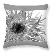 0689c-004 Throw Pillow