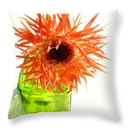 0690c-001 Throw Pillow