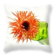 0690c-003 Throw Pillow