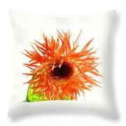 0690c-004 Throw Pillow