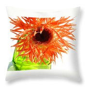 0690c-007 Throw Pillow