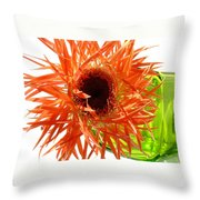 0690c-009 Throw Pillow
