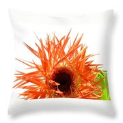 0690c-010 Throw Pillow