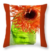 0690c-012 Throw Pillow