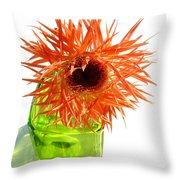 0690c-015 Throw Pillow