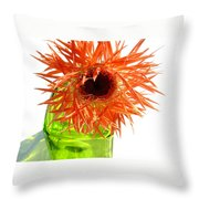 0690c-018 Throw Pillow