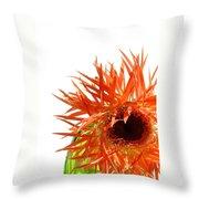 0690c-020 Throw Pillow