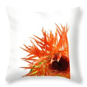 0690c-025 Throw Pillow