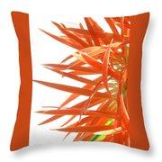 0692c-004 Throw Pillow