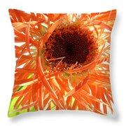 0692c-005 Throw Pillow