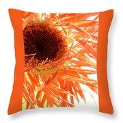 0692c-007 Throw Pillow