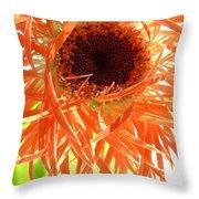 0692c-009 Throw Pillow