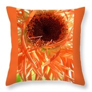 0692c-012 Throw Pillow