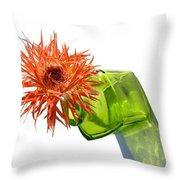 0694c Throw Pillow