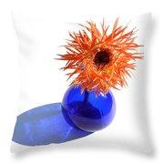 0697c Throw Pillow