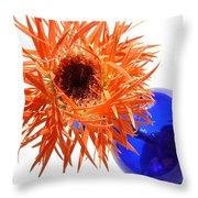 0700c1 Throw Pillow