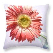 0702c1 Throw Pillow