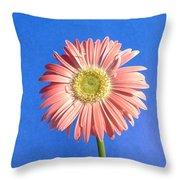 0711c Throw Pillow