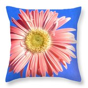 0711c2-001 Throw Pillow