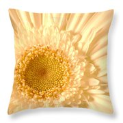 0715c2 Throw Pillow