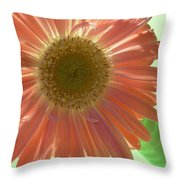 0769 Throw Pillow