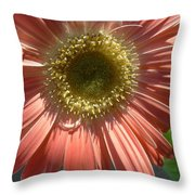 0795 Throw Pillow