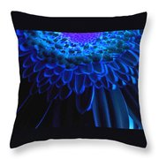 0814a3-003 Throw Pillow