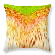 0814a4-5 Throw Pillow