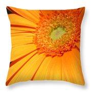 0977-11c Throw Pillow
