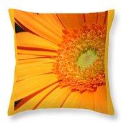 0977-4c Throw Pillow