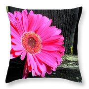 0996c Throw Pillow