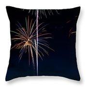 20120706-dsc06455 Throw Pillow