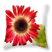 2193c-001 Throw Pillow