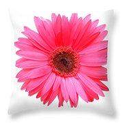 5556c Throw Pillow