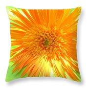 6174-001c Throw Pillow