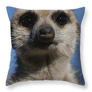 A Close View Of A Meerkat Suricata Throw Pillow
