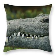 A Close View Of The Teeth Of An Throw Pillow