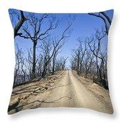 A Dirt Road Runs Along A Mountain Top Throw Pillow