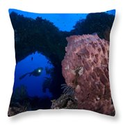 A Diver Looks On At A Giant Barrel Throw Pillow