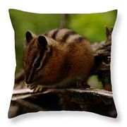 A Little Chipmunk Throw Pillow