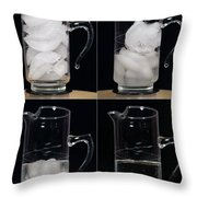 A Pitcher Of Ice Melts Over 4 Hours Throw Pillow