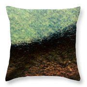 A Place To Ponder - Macro1 Throw Pillow